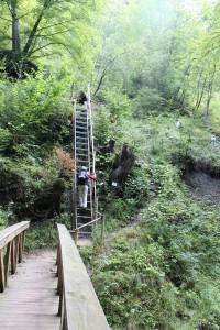 Schluchtensteig_2.Etappe_Schleifenbachwasserfall_2