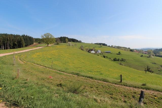 Trekking Schwarzwald Bodensee – Tag 2