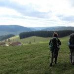 IMG_1347_A_Blick ins Jostal