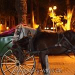 IMG_7001_Marrakesch Pferdekutsche