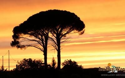 Roadtrip Italien – Rund um Sizilien, Teil 1